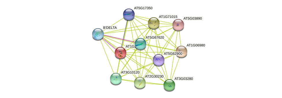 AT1G21010 protein (Arabidopsis thaliana) - STRING interaction network