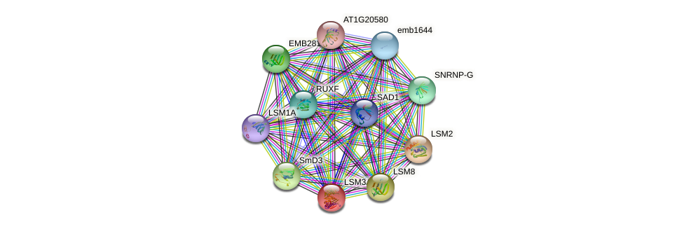 LSM3A protein (Arabidopsis thaliana) - STRING interaction network