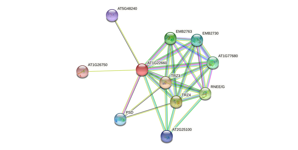 AT1G22660 protein (Arabidopsis thaliana) - STRING interaction network
