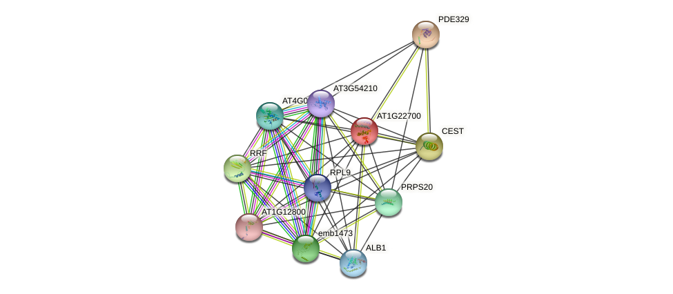 AT1G22700 protein (Arabidopsis thaliana) - STRING interaction network