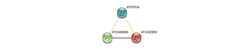 AT1G22950 protein (Arabidopsis thaliana) - STRING interaction network