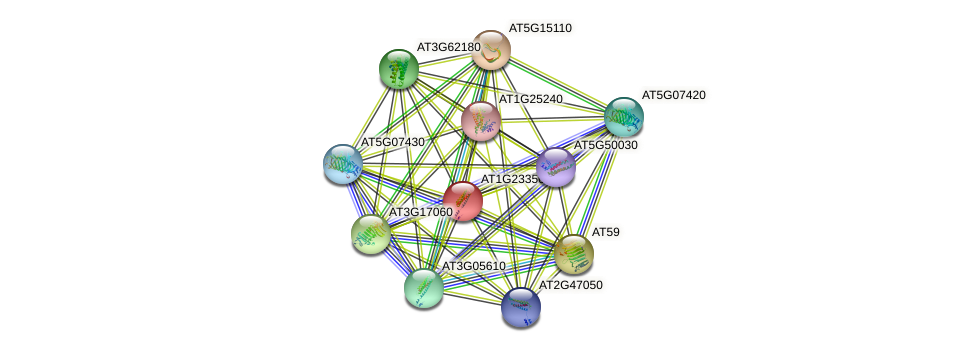 AT1G23350 protein (Arabidopsis thaliana) - STRING interaction network