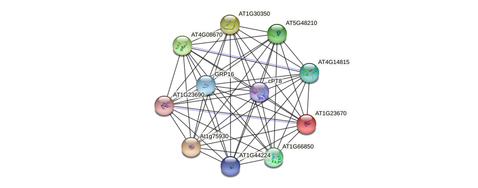 AT1G23670 protein (Arabidopsis thaliana) - STRING interaction network