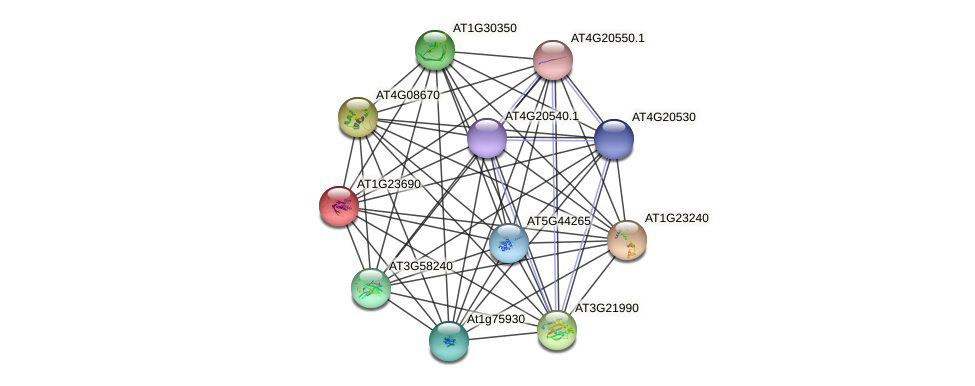 AT1G23690 protein (Arabidopsis thaliana) - STRING interaction network