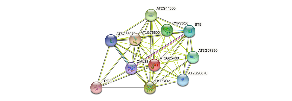 AT1G25400 protein (Arabidopsis thaliana) - STRING interaction network