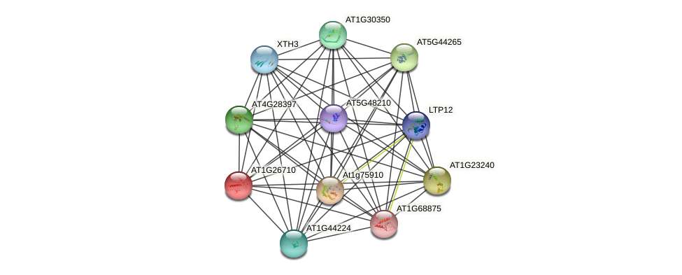 AT1G26710 protein (Arabidopsis thaliana) - STRING interaction network