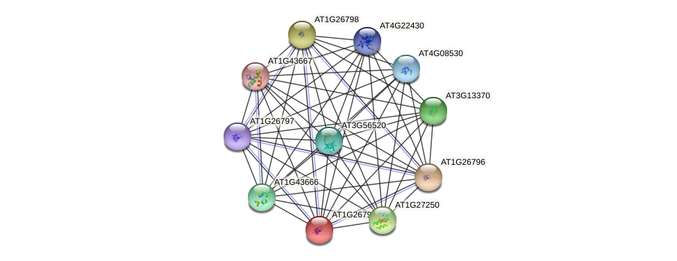 AT1G26799 protein (Arabidopsis thaliana) - STRING interaction network