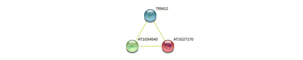 AT1G27170 protein (Arabidopsis thaliana) - STRING interaction network