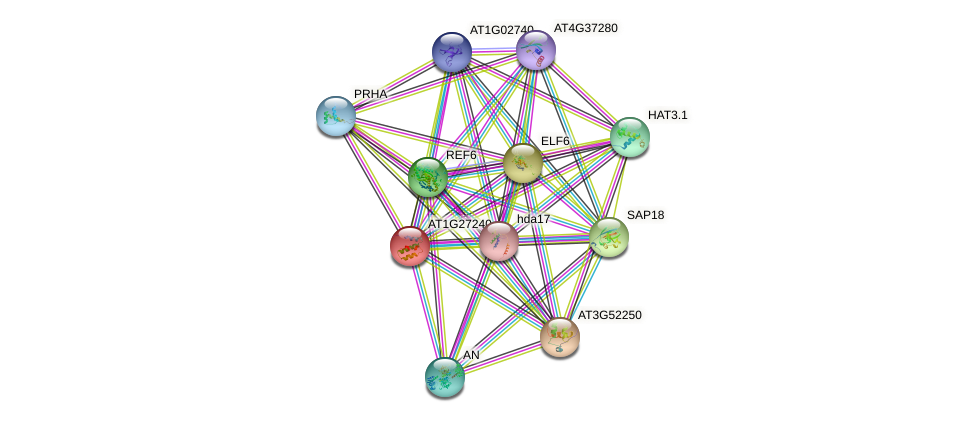 AT1G27240 protein (Arabidopsis thaliana) - STRING interaction network