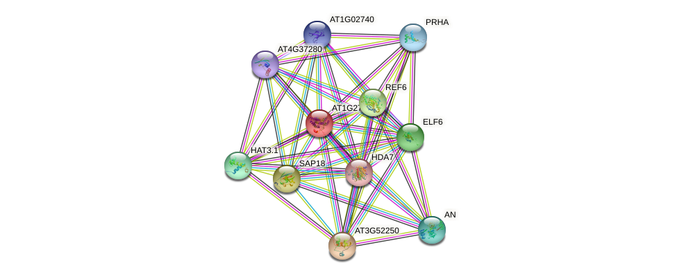 AT1G27270 protein (Arabidopsis thaliana) - STRING interaction network