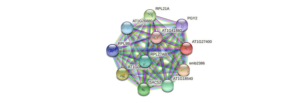 AT1G27400 protein (Arabidopsis thaliana) - STRING interaction network