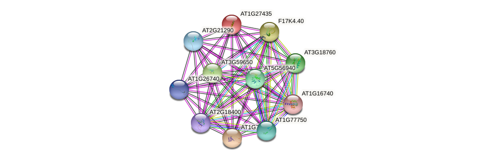 AT1G27435 protein (Arabidopsis thaliana) - STRING interaction network