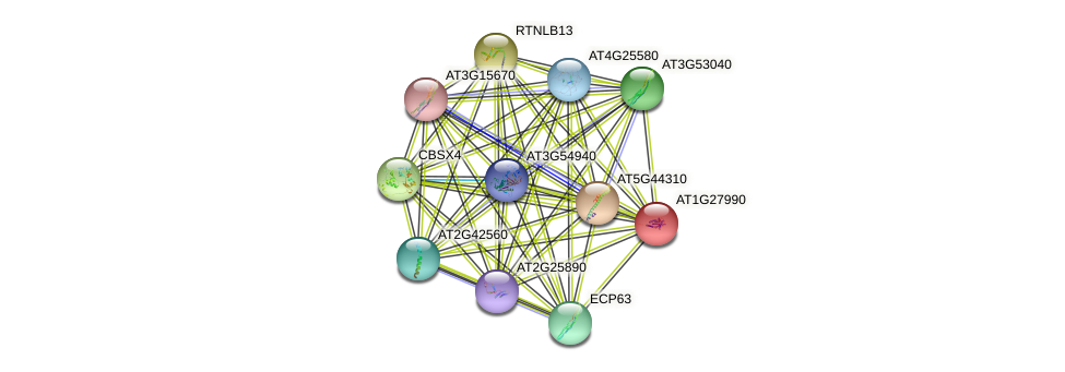 AT1G27990 protein (Arabidopsis thaliana) - STRING interaction network