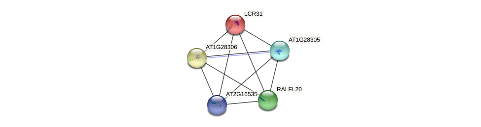 LCR31 protein (Arabidopsis thaliana) - STRING interaction network