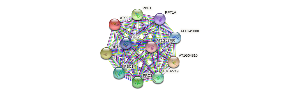 ATS9 protein (Arabidopsis thaliana) - STRING interaction network