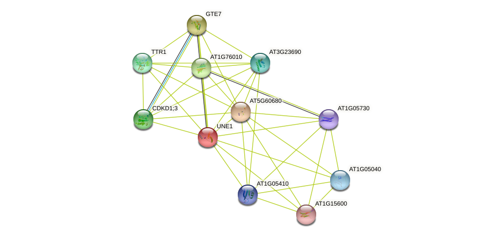 UNE1 protein (Arabidopsis thaliana) - STRING interaction network