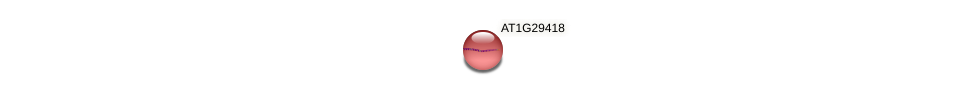 AT1G29418 protein (Arabidopsis thaliana) - STRING interaction network