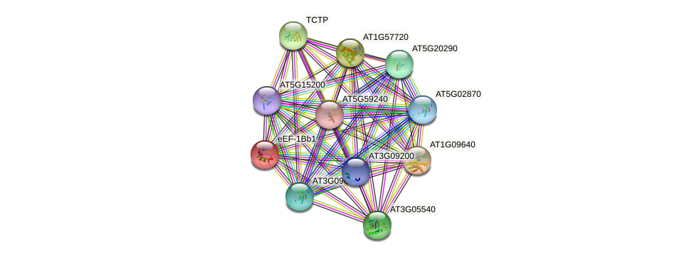eEF-1Bb1 protein (Arabidopsis thaliana) - STRING interaction network