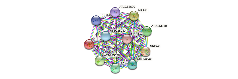 AT1G30590 protein (Arabidopsis thaliana) - STRING interaction network