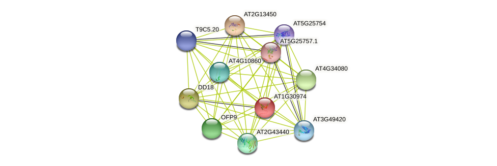 AT1G30974 protein (Arabidopsis thaliana) - STRING interaction network