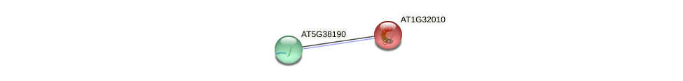 AT1G32010 protein (Arabidopsis thaliana) - STRING interaction network