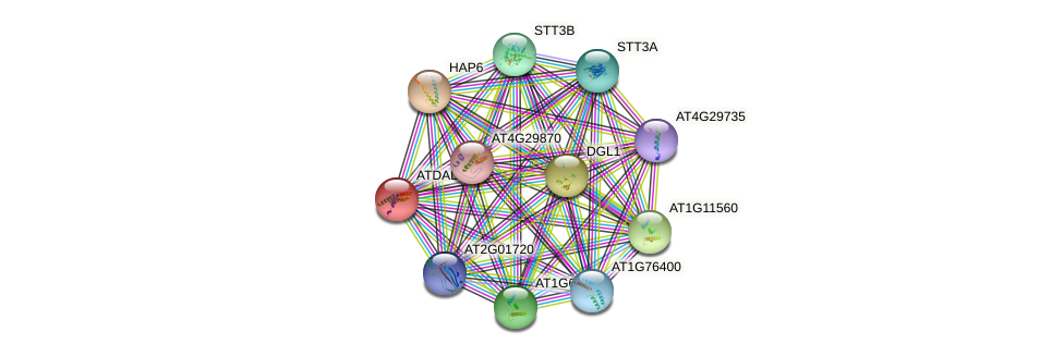 ATDAD1 protein (Arabidopsis thaliana) - STRING interaction network