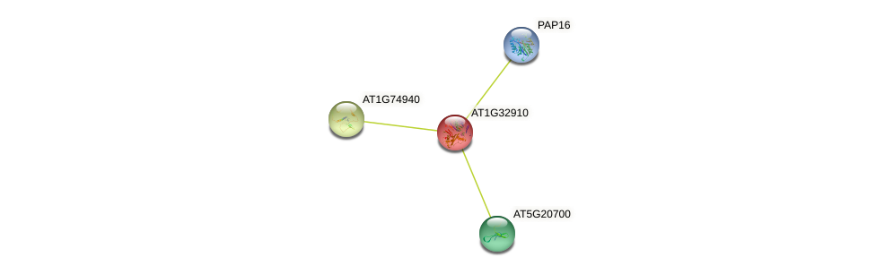 AT1G32910 protein (Arabidopsis thaliana) - STRING interaction network