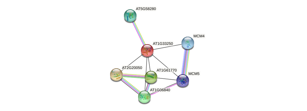 AT1G33250 protein (Arabidopsis thaliana) - STRING interaction network