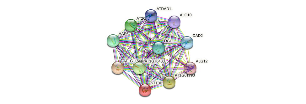 STT3B protein (Arabidopsis thaliana) - STRING interaction network