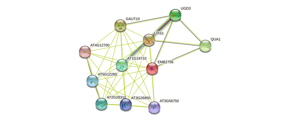EMB2756 protein (Arabidopsis thaliana) - STRING interaction network