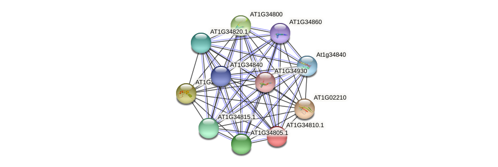 AT1G34810.1 protein (Arabidopsis thaliana) - STRING interaction network