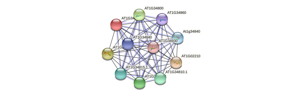 AT1G34820.1 protein (Arabidopsis thaliana) - STRING interaction network