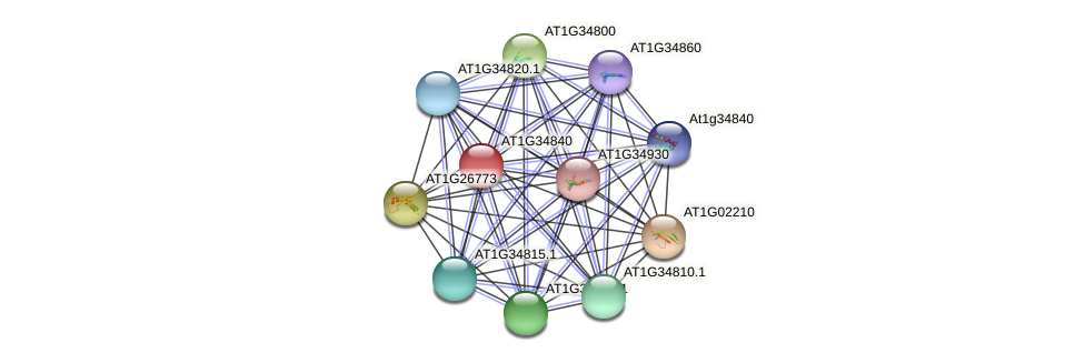 AT1G34840 protein (Arabidopsis thaliana) - STRING interaction network