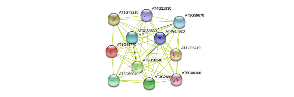 AT1G44770 protein (Arabidopsis thaliana) - STRING interaction network