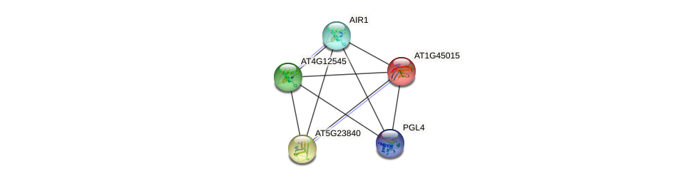 AT1G45015 protein (Arabidopsis thaliana) - STRING interaction network