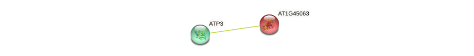 AT1G45063 protein (Arabidopsis thaliana) - STRING interaction network
