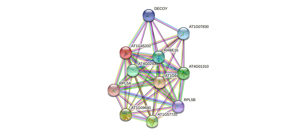 AT1G45332 protein (Arabidopsis thaliana) - STRING interaction network