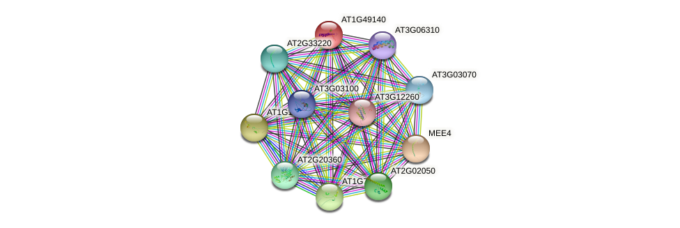 AT1G49140 protein (Arabidopsis thaliana) - STRING interaction network