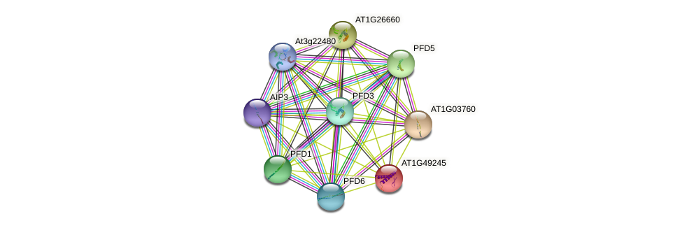 AT1G49245 protein (Arabidopsis thaliana) - STRING interaction network