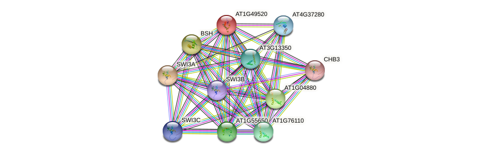 AT1G49520 protein (Arabidopsis thaliana) - STRING interaction network