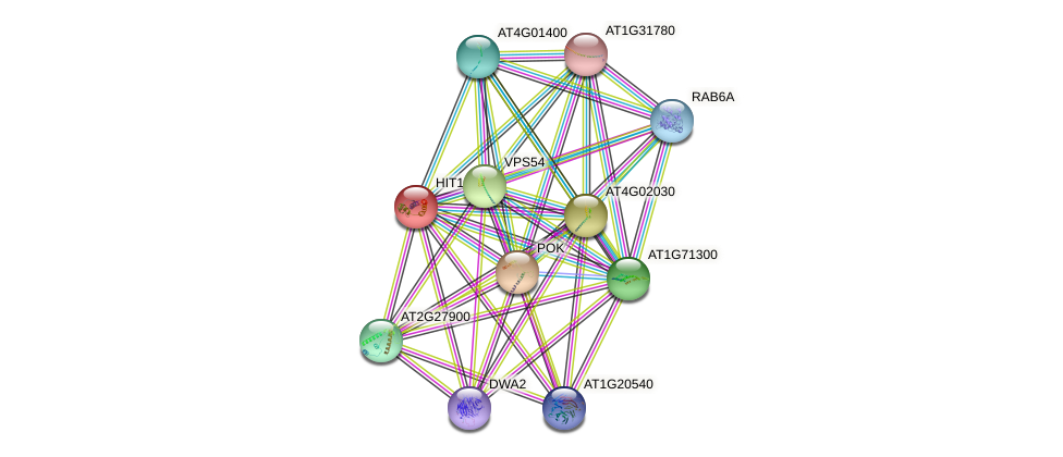 HIT1 protein (Arabidopsis thaliana) - STRING interaction network