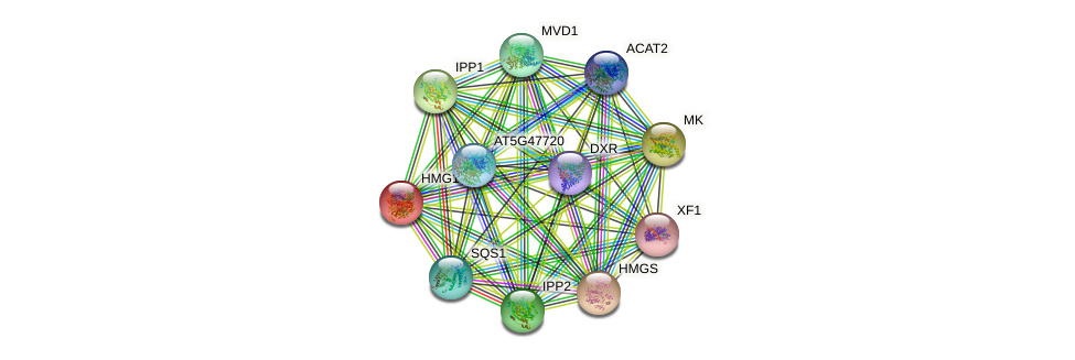 HMG1 protein (Arabidopsis thaliana) - STRING interaction network
