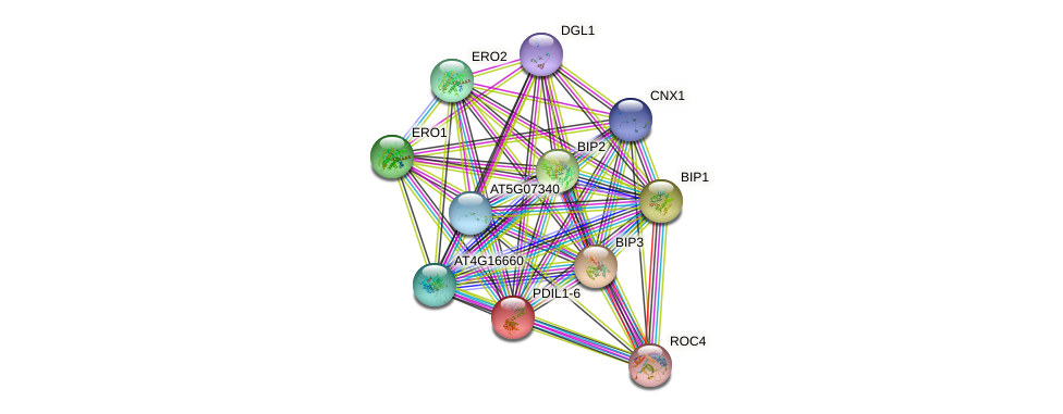 PDIL1-6 protein (Arabidopsis thaliana) - STRING interaction network