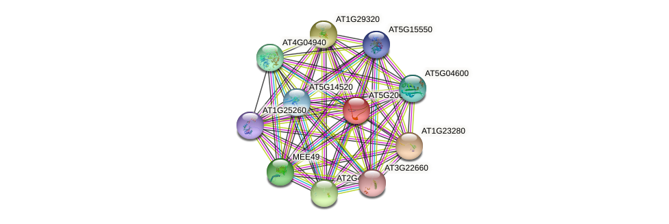 AT5G20600 protein (Arabidopsis thaliana) - STRING interaction network