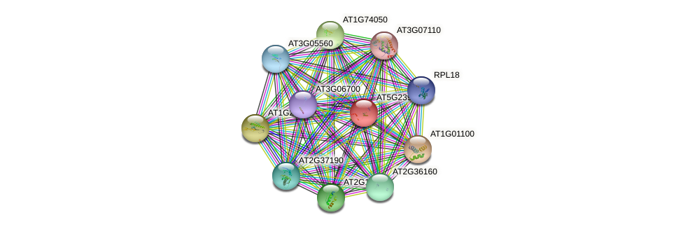 AT5G23900 protein (Arabidopsis thaliana) - STRING interaction network