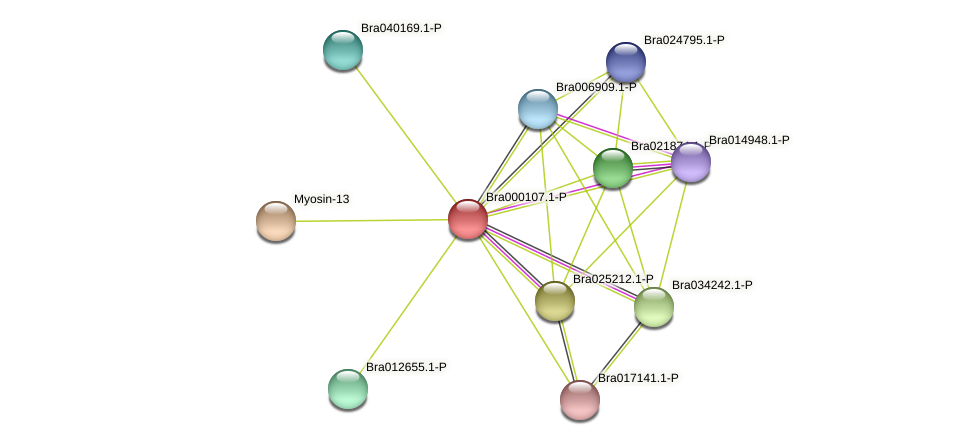 Bra000107 protein (Brassica rapa) - STRING interaction network