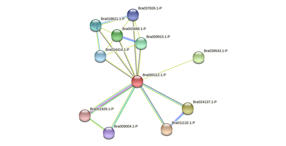 Bra000112 protein (Brassica rapa) - STRING interaction network
