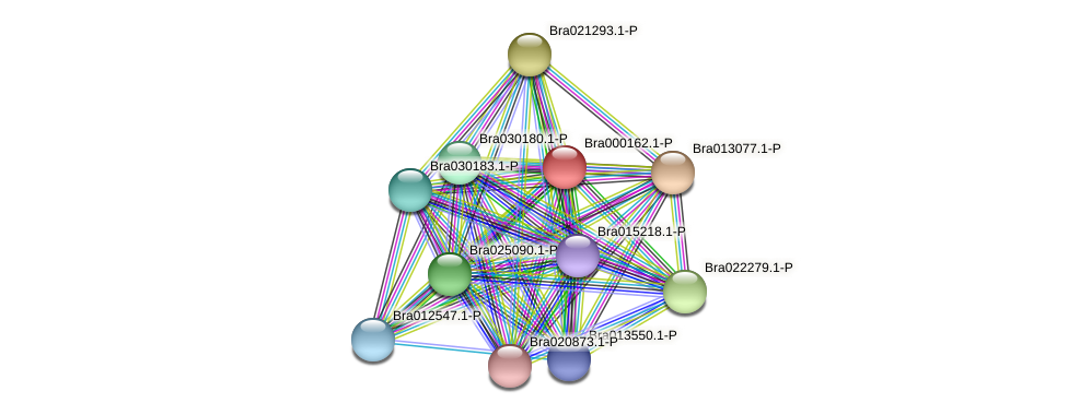 Bra000162 protein (Brassica rapa) - STRING interaction network