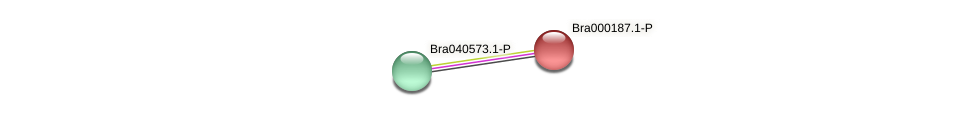 Bra000187 protein (Brassica rapa) - STRING interaction network