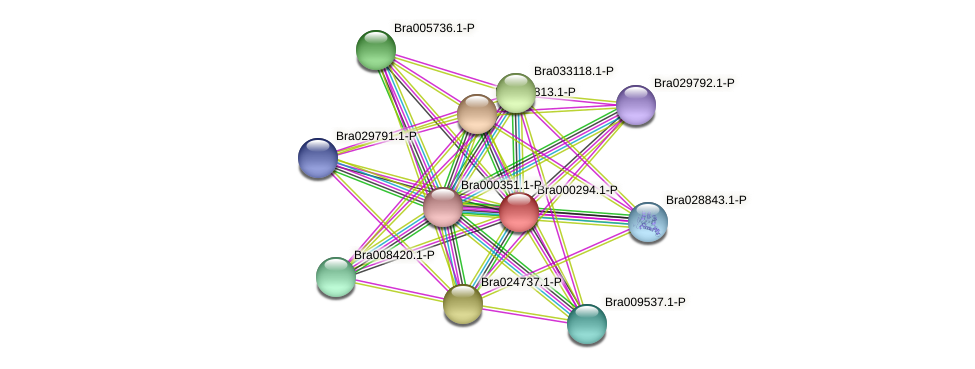 Bra000294 protein (Brassica rapa) - STRING interaction network